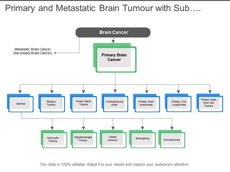 primary_and_metastatic_brain_tumour_with_sub_categories_Slide01