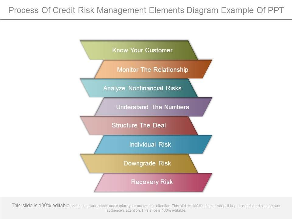 Process Of Credit Risk Management Elements Diagram Example
