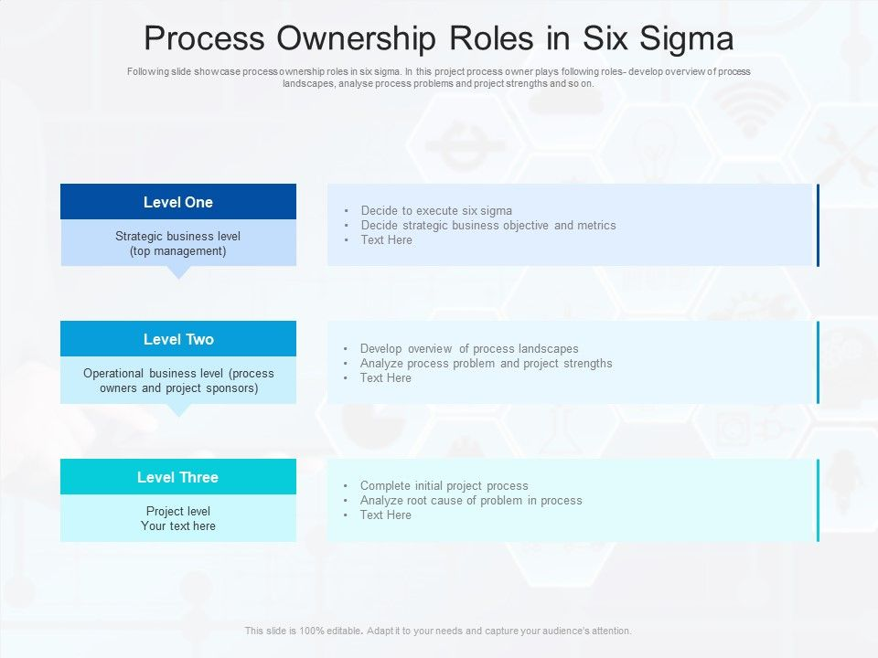 Process Ownership Roles In Six Sigma