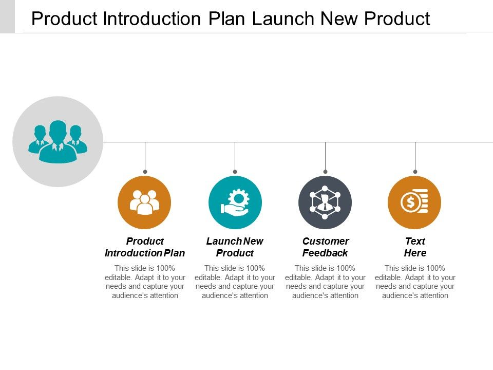 product_introduction_plan_launch_new_product_customer_feedback_cpb_Slide01