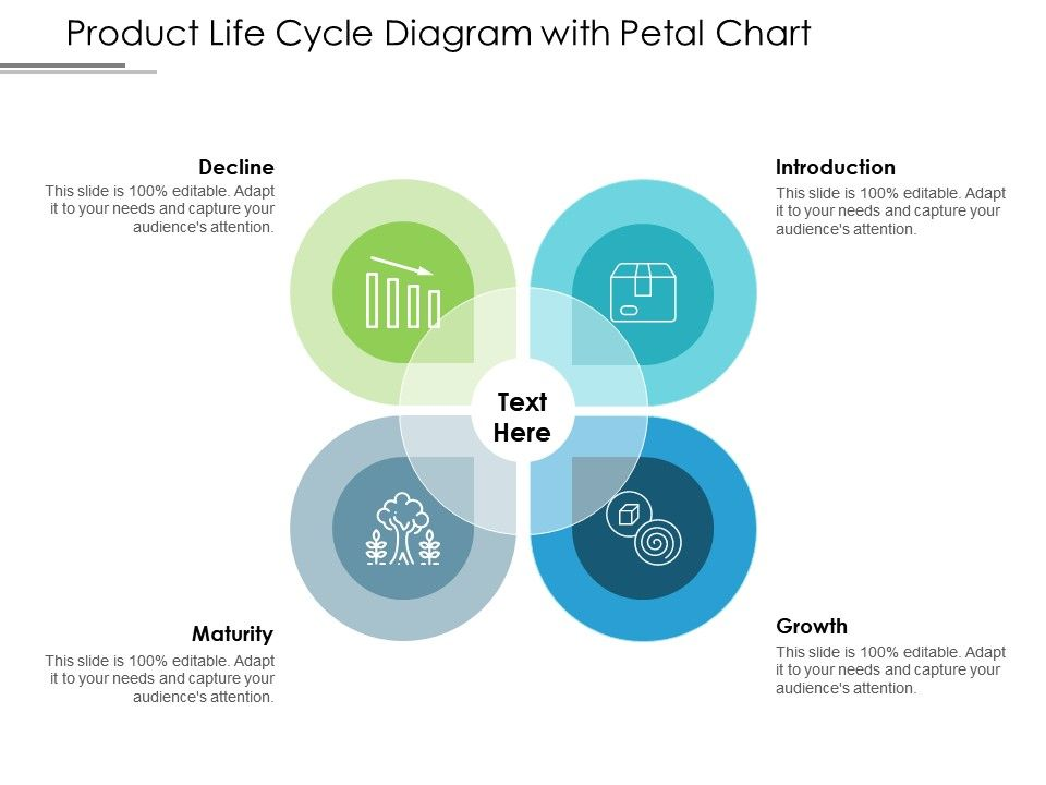 Product Life Cycle Diagram With Petal Chart Powerpoint