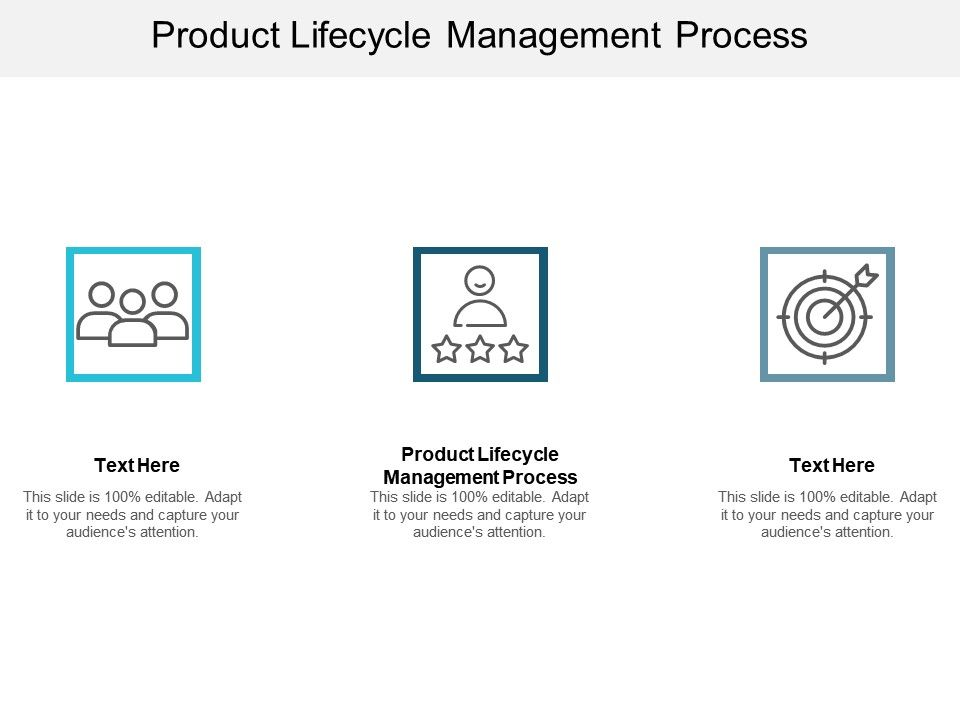 Product Lifecycle Management Process Ppt Powerpoint Presentation Summary Guidelines Cpb