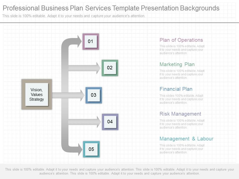 professional_business_plan_services_template_presentation_backgrounds_Slide01
