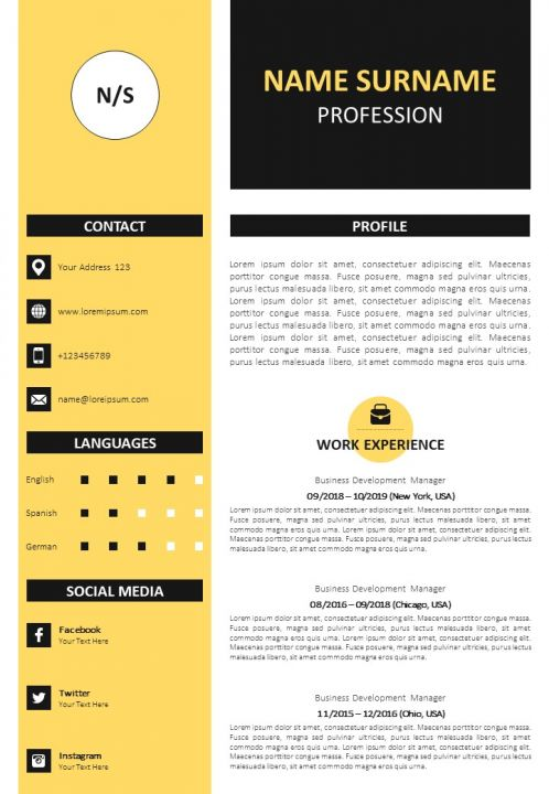 professional cv format with awards and references