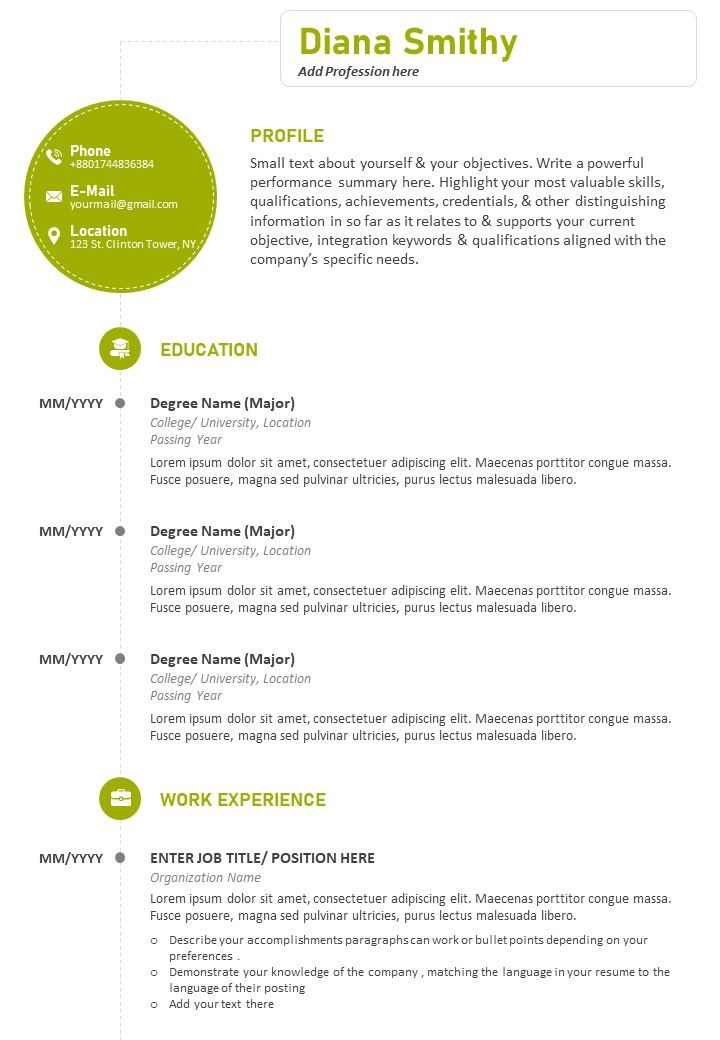 Professional Cv Sample With Previous Work Details Powerpoint