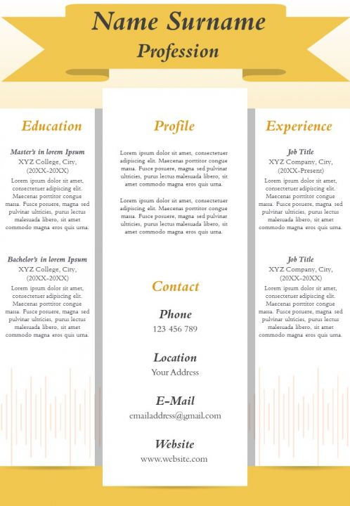 Professional Resume CV Sample Format Template To Introduce Yourself
