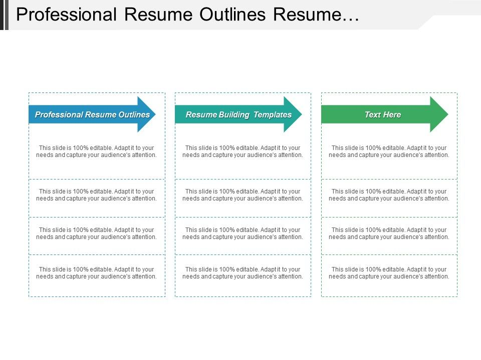 Professional Resume Outlines Resume Building Templates