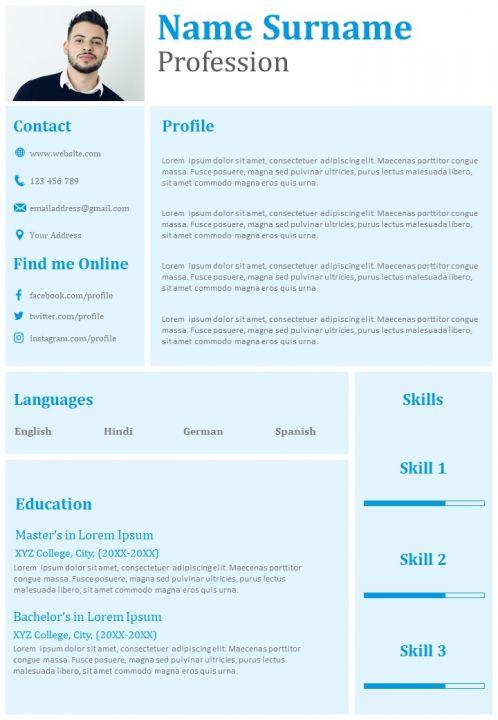 Professional Resume Sample With Profile Summary