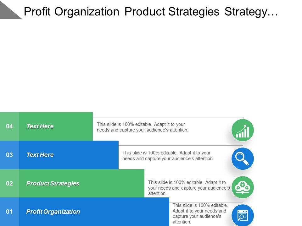 Profit Organization Product Strategies Strategy Position