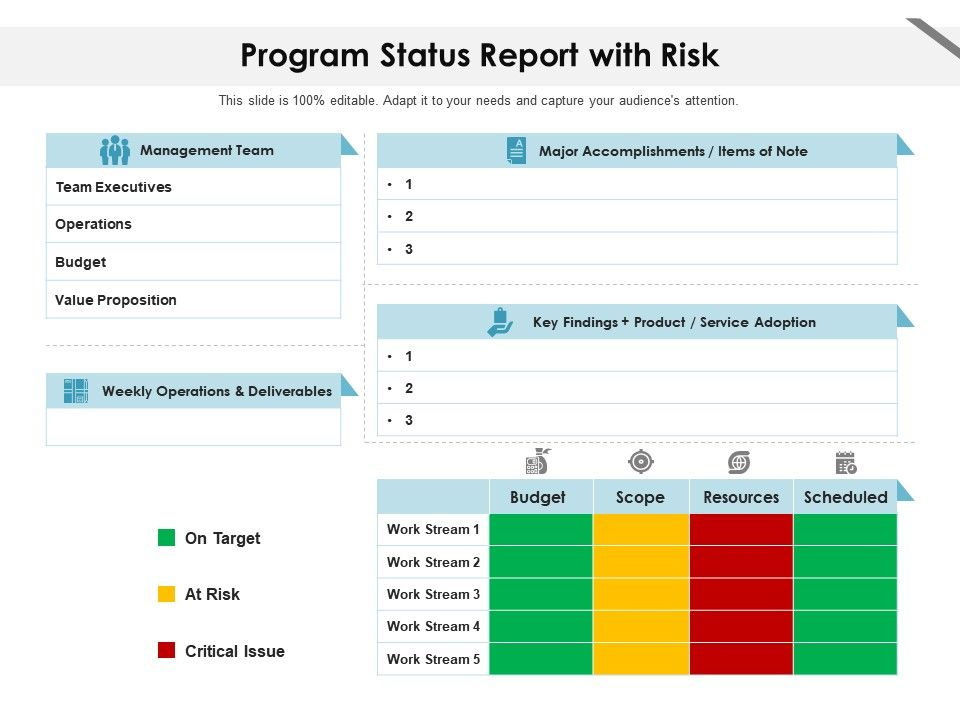 Program Status Report With Risk