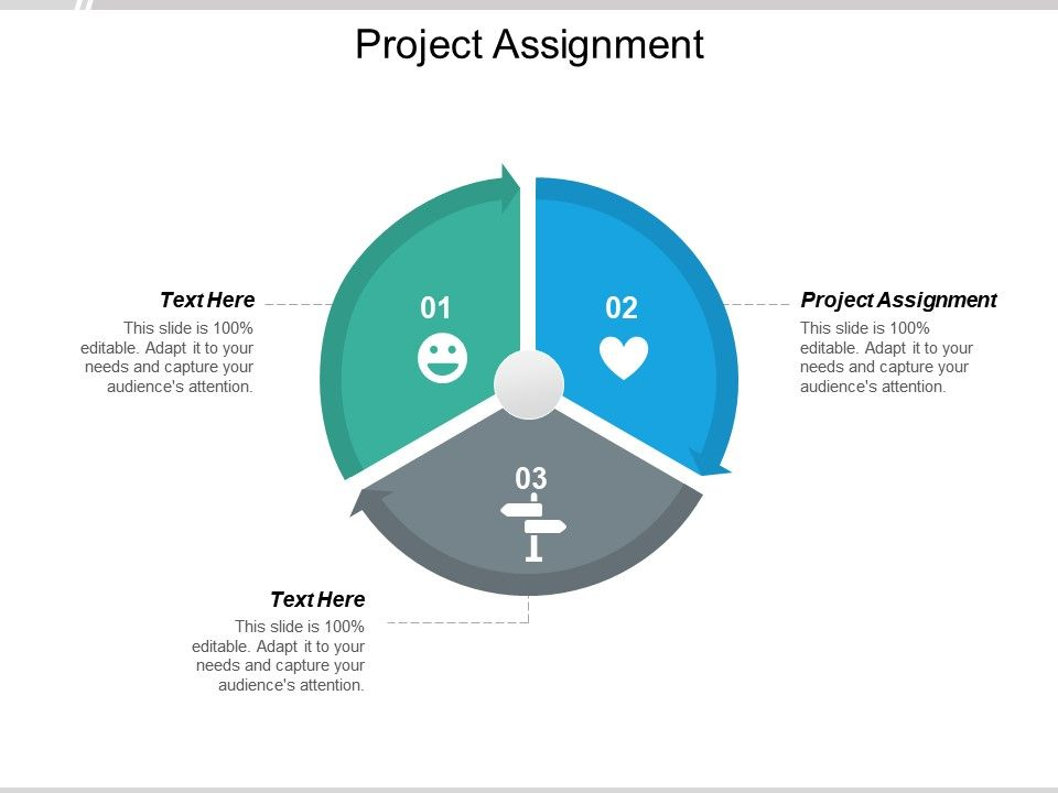Project Assignment Ppt Powerpoint Presentation Icon Slides