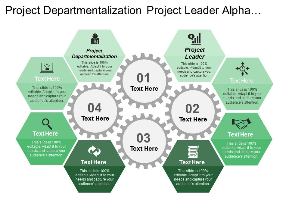 project_departmentalization_project_leader_alpha_project_beta_project_Slide01