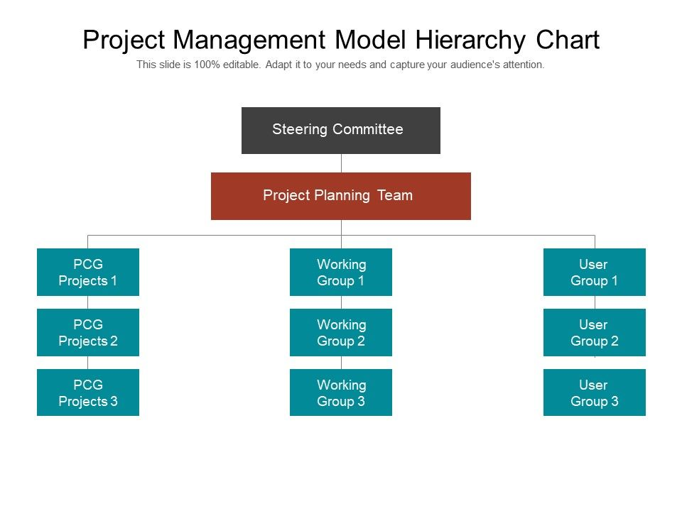 project_management_model_hierarchy_chart_powerpoint_slide_influencers_Slide01