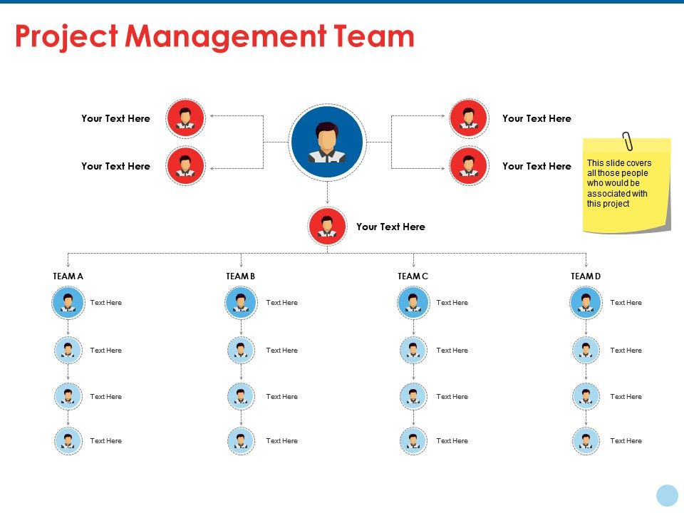 project_management_team_ppt_summary_example_file_Slide01