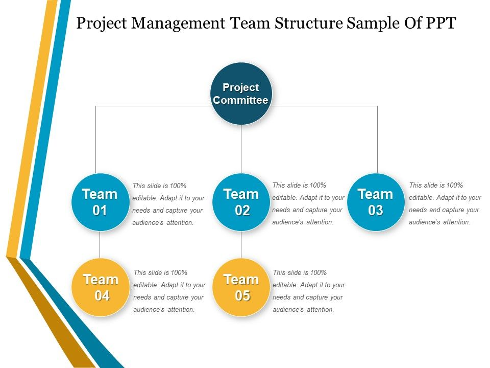 Project Management Team Structure Sample Of Ppt | PowerPoint ...