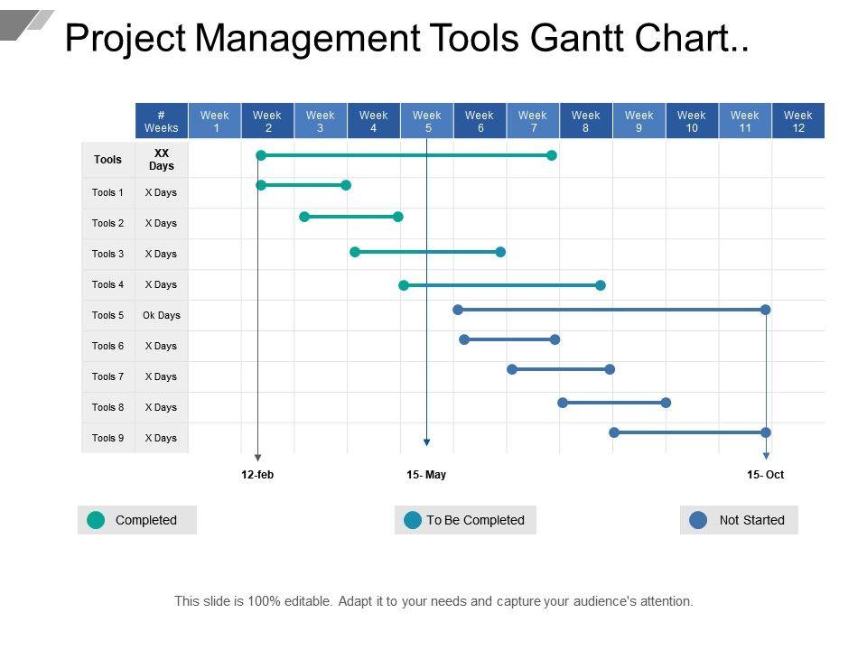 project management tools gantt chart showing project status