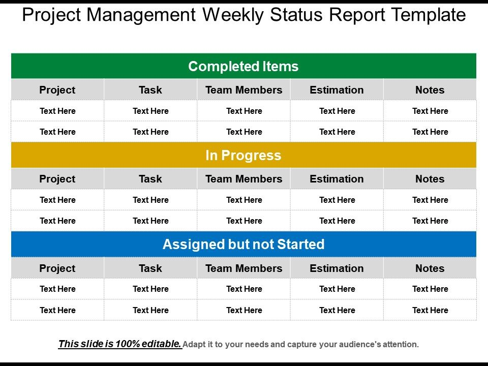 Project Management Weekly Status Report Template  Templates