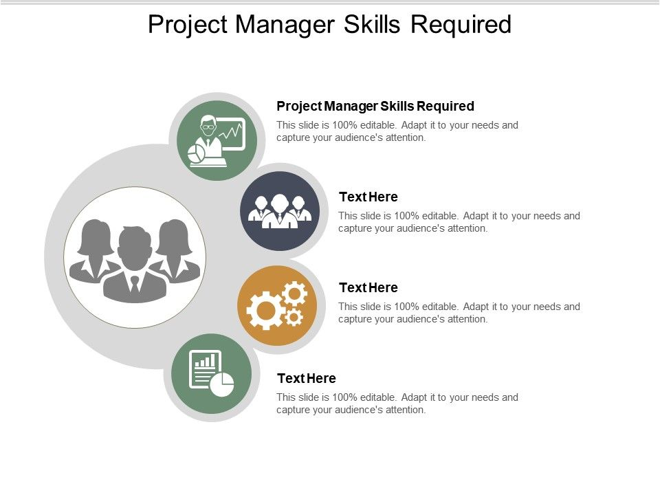 Project Manager Skills Required Ppt Powerpoint Presentation Summary Graphic Tips Cpb