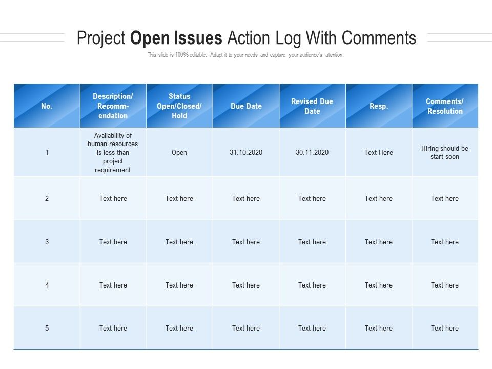 Project Open Issues Action Log With Comments
