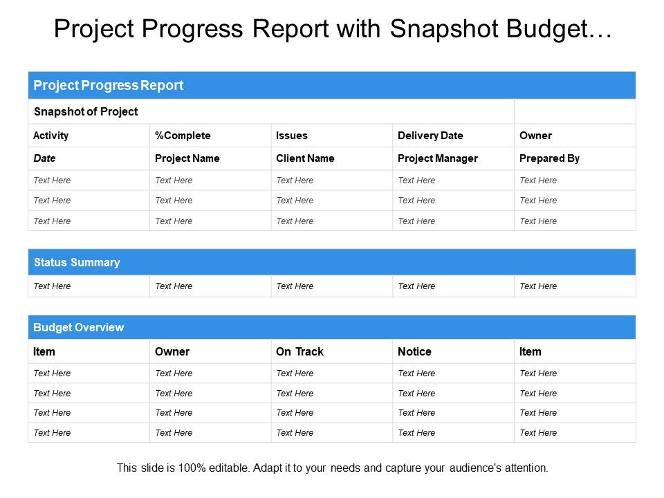 project_progress_report_with_snapshot_budget_overview_status_summary_Slide01
