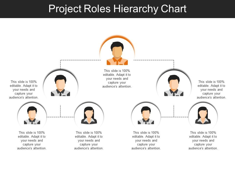 project roles hierarchy chart sample of ppt presentation
