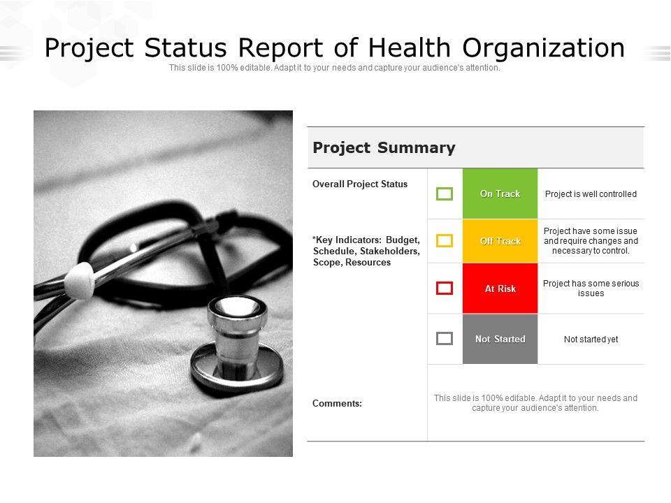 Project Status Report Of Health Organization