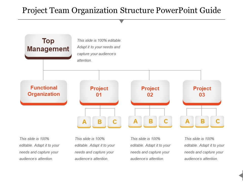 project team organization structure powerpoint guide. Black Bedroom Furniture Sets. Home Design Ideas