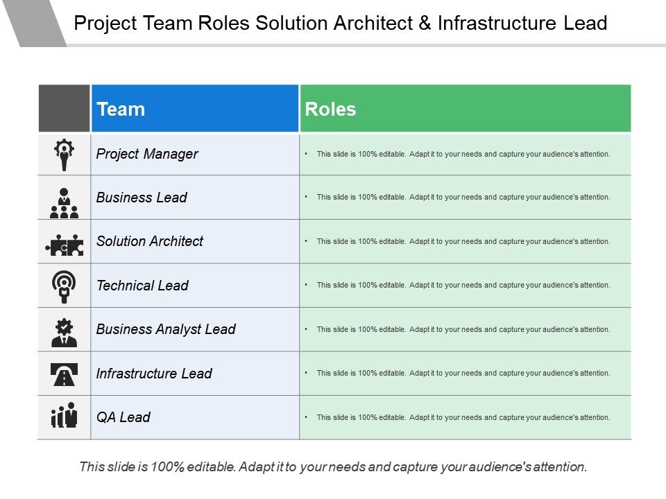 Project Team Roles Solution Architect And Infrastructure