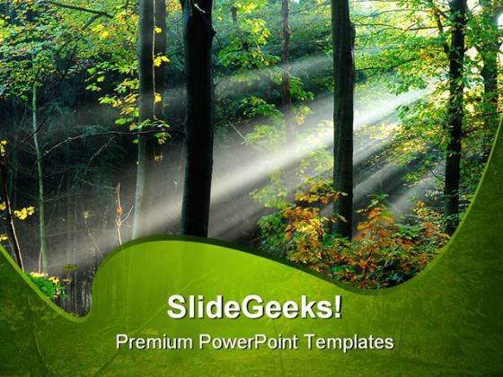 Beams Of Light Through Trees Nature PowerPoint Templates And PowerPoint Backgrounds 0211  Presentation Themes and Graphics Slide01