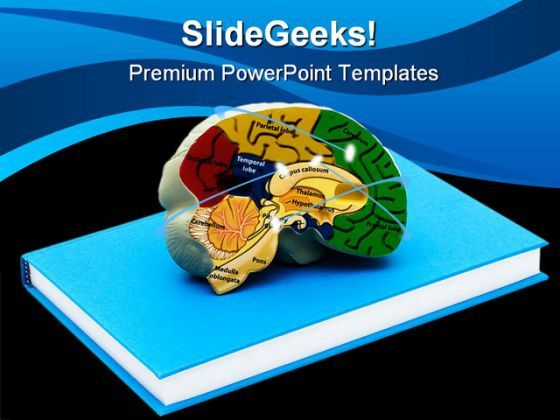 Brain Science PowerPoint Backgrounds And Templates 1210  Presentation Themes and Graphics Slide01
