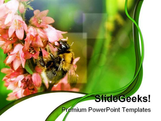 Bumble Bee Nature PowerPoint Templates And PowerPoint Backgrounds 0211  Presentation Themes and Graphics Slide01