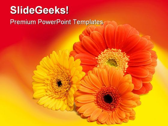 Daisies Beauty PowerPoint Background And Template 1210  Presentation Themes and Graphics Slide01