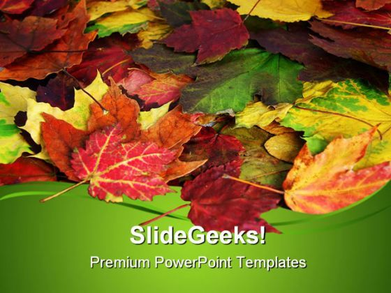 Fall Leaves Nature PowerPoint Templates And PowerPoint Backgrounds 0511  Presentation Themes and Graphics Slide01