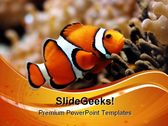 Nemo Animals PowerPoint Templates And PowerPoint Backgrounds 0511  Presentation Themes and Graphics Slide01