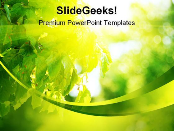 Sun Light Through Leaves Nature PowerPoint Background And Template 1210  Presentation Themes and Graphics Slide01
