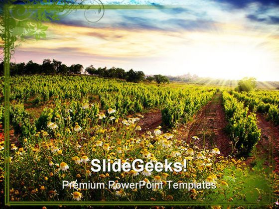 Vineyard Nature PowerPoint Templates And PowerPoint Backgrounds 0311  Presentation Themes and Graphics Slide01