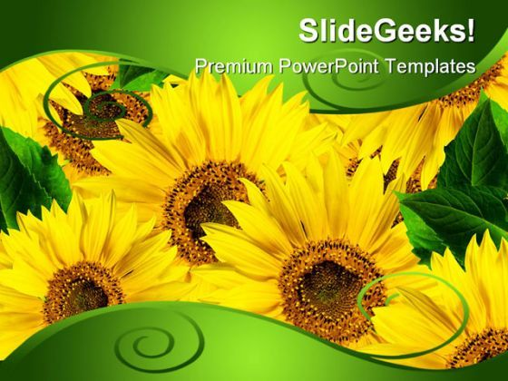 Yellow Flowers Beauty PowerPoint Background And Template 1210  Presentation Themes and Graphics Slide01