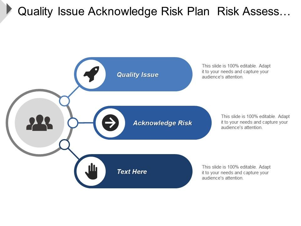 quality_issue_acknowledge_risk_plan_risk_assess_analyze_Slide01