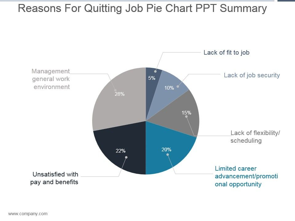Reasons For Quitting Job Pie Chart Ppt Summary Powerpoint