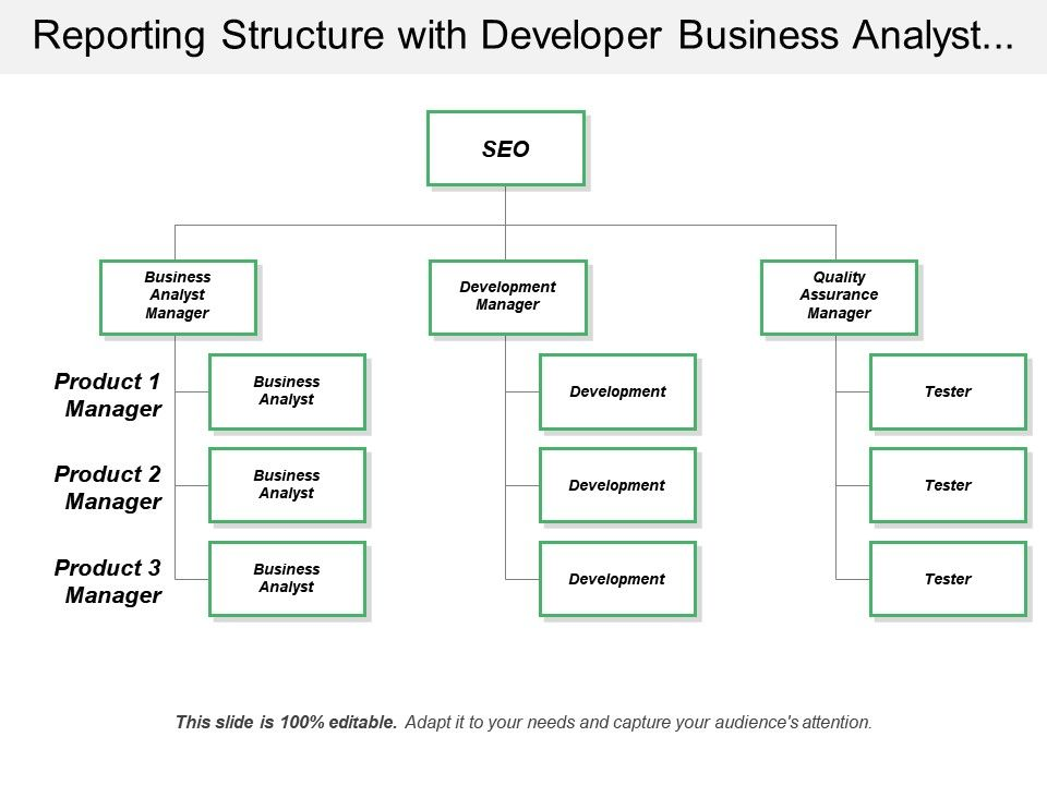 reporting_structure_with_developer_business_analyst_tester_Slide01