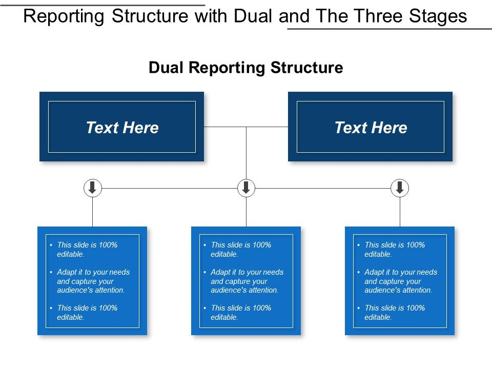 reporting_structure_with_dual_and_the_three_stages_Slide01