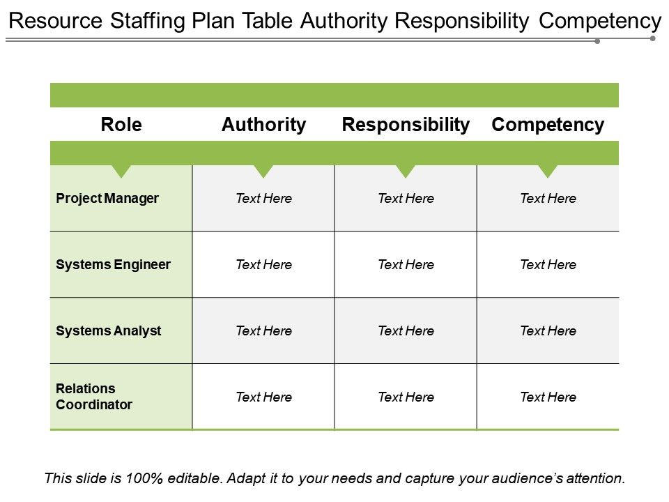 Resource Staffing Plan Table Authority Responsibility
