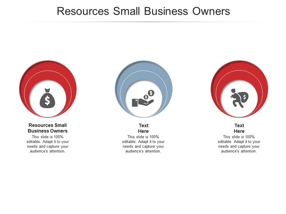 Resources Small Business Owners Ppt Powerpoint Presentation Infographics Slides Cpb
