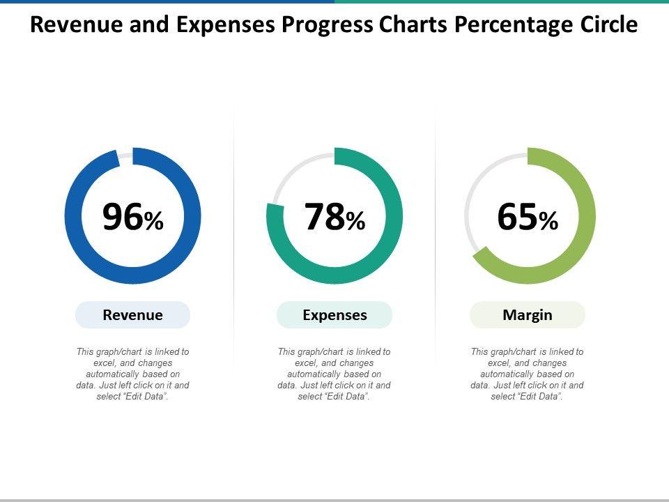 revenue_and_expenses_progress_charts_percentage_circle_Slide01