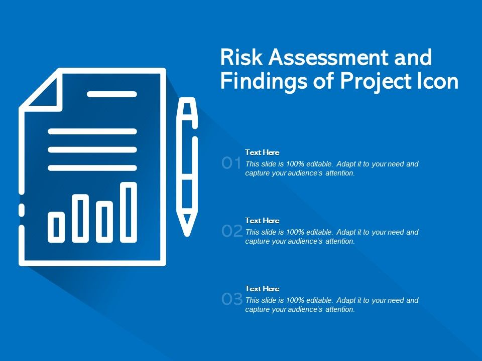 Risk Assessment And Findings Of Project Icon