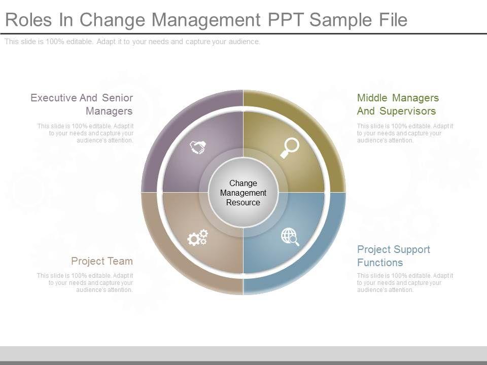 Roles In Change Management Ppt Sample File | Template Presentation