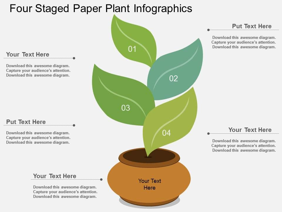 Ry Four Staged Paper Plant Infographics Flat Powerpoint