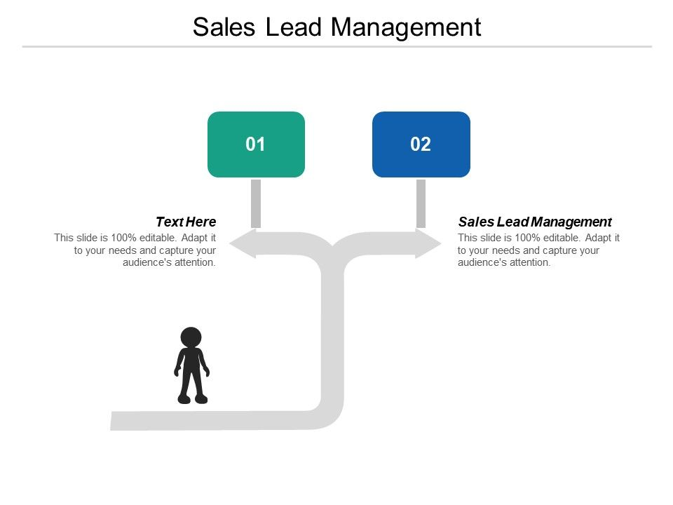 Sales Lead Management Ppt Powerpoint Presentation Icon Elements Cpb