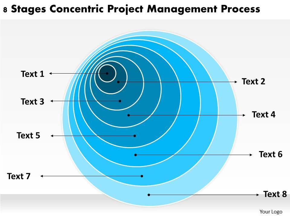 Sample Business Organizational Chart Stages Concentric Project