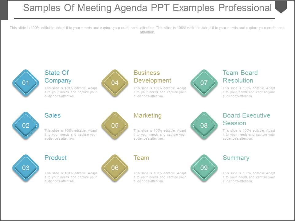 samples of meeting agenda ppt examples professional powerpoint